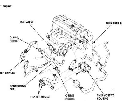 16 Best 95 Civic Starter Wiring Diagram Photos