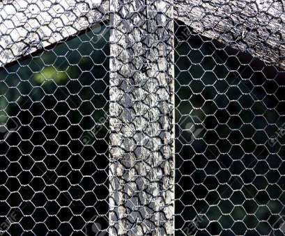bird wire mesh A closeup of a section of a bird aviary made with a wooden frame, bound 20 Perfect Bird Wire Mesh Pictures
