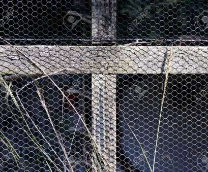 bird wire mesh A closeup of a section of a bird aviary made with a wooden frame, bound Bird Wire Mesh Brilliant A Closeup Of A Section Of A Bird Aviary Made With A Wooden Frame, Bound Images