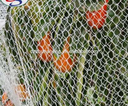 bird wire mesh Anti Bird Wire Mesh, Anti Bird Wire Mesh Suppliers, Manufacturers at Alibaba.com Bird Wire Mesh Best Anti Bird Wire Mesh, Anti Bird Wire Mesh Suppliers, Manufacturers At Alibaba.Com Ideas