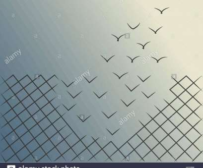 bird wire mesh Vector illustrations of a wire mesh fence transforming into birds flying away. Freedom, courage, success concept Bird Wire Mesh Popular Vector Illustrations Of A Wire Mesh Fence Transforming Into Birds Flying Away. Freedom, Courage, Success Concept Galleries