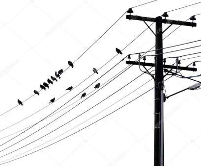 black and white electrical wires Black, white silhouette of flock of birds resting on telephone wires with pole, crossbar., Photo by click60 Black, White Electrical Wires Cleaver Black, White Silhouette Of Flock Of Birds Resting On Telephone Wires With Pole, Crossbar., Photo By Click60 Solutions