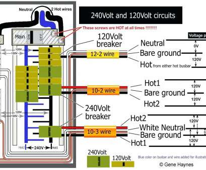 cat 6 wiring diagram for wall plates a or b Cat 6 Wiring Diagram, Wall Plates Australia Home Networking Best Of Cat 6 Wiring Diagram, Wall Plates A Or B Simple Cat 6 Wiring Diagram, Wall Plates Australia Home Networking Best Of Collections