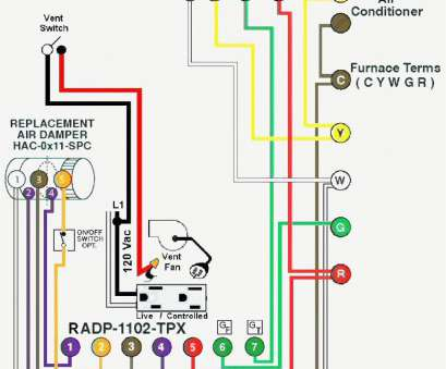 ceiling fan light switch wiring diagram ... Ceiling, Light Pull Switch Plus Wiring Diagram · •. Indulging Ceiling, Light Switch Wiring Diagram Creative ... Ceiling, Light Pull Switch Plus Wiring Diagram · •. Indulging Solutions