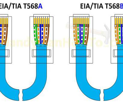 clipsal rj45 jack wiring diagram Rj45 Plate Wiring Diagram, Wall Cat5e Connection Socket Clipsal Rj45 Jack Wiring Diagram Brilliant Rj45 Plate Wiring Diagram, Wall Cat5E Connection Socket Images