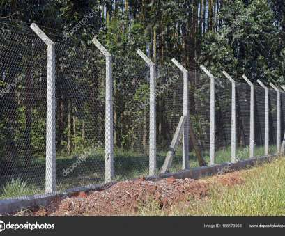 concrete wire mesh fence Wire mesh fence with concrete post to protect planting eucalyptus, Photo by Jaboticabafotos Concrete Wire Mesh Fence Practical Wire Mesh Fence With Concrete Post To Protect Planting Eucalyptus, Photo By Jaboticabafotos Galleries