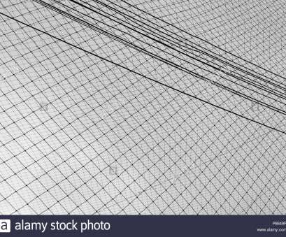 decorative black wire mesh Decorative wire mesh Texture background, design Stock Photo 14 Best Decorative Black Wire Mesh Collections