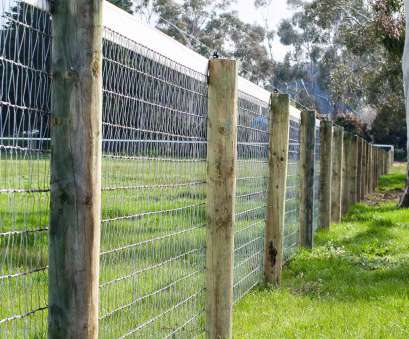 diamond mesh wire fence Diamond Mesh Horse Fencing Guarantee pertaining to proportions 3456 X 2304 20 Professional Diamond Mesh Wire Fence Photos