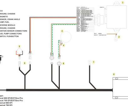 double pole single throw rocker switch wiring diagram double pole switch wiring diagram best of wire a contactor step 8 in rh mihella me double pole single throw rocker switch wiring diagram double pole circuit 10 Simple Double Pole Single Throw Rocker Switch Wiring Diagram Ideas