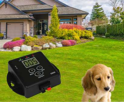 electric dog fence wireless vs wired Invisible Wired Cheap, Fence, Milioanedeprieteni Electric, Fence Wireless Vs Wired Simple Invisible Wired Cheap, Fence, Milioanedeprieteni Images