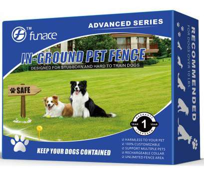 electric dog fence wireless vs wired Underground Wired, Containment System: 100% Safe In-Ground Electric, Fence 1 of 8Only 2 available, More Electric, Fence Wireless Vs Wired Most Underground Wired, Containment System: 100% Safe In-Ground Electric, Fence 1 Of 8Only 2 Available, More Photos
