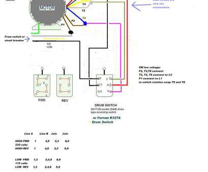 Leeson Motor Wiring Schematic - Schematics Online on