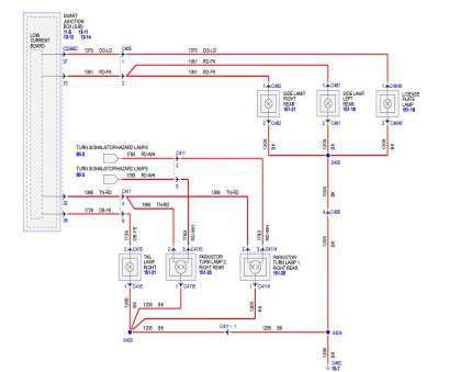 electrical wiring colors thailand tail light wiring diagram, mustang source ford mustang forums rh themustangsource, diagram of thailand Electrical Wiring Colors Thailand Professional Tail Light Wiring Diagram, Mustang Source Ford Mustang Forums Rh Themustangsource, Diagram Of Thailand Images