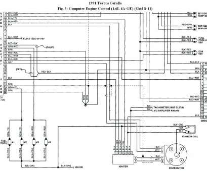 electrical wiring diagram toyota corolla 2000 ... diagram toyota corolla electrical wiring diagram 2000 Durango Wiring Diagram Home Electrical Wiring Diagrams Electrical Wiring Diagram Toyota Corolla 2000 Practical ... Diagram Toyota Corolla Electrical Wiring Diagram 2000 Durango Wiring Diagram Home Electrical Wiring Diagrams Collections