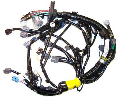 electrical wiring harness 04-08, Manual Engine Wiring Harness (N3H3-18-05ZJ) Electrical Wiring Harness Best 04-08, Manual Engine Wiring Harness (N3H3-18-05ZJ) Pictures