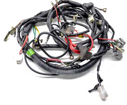 electrical wiring harness Details about 98 Yamaha Timberwolf, 2x4 Wire Harness Electrical Wiring YFB250 Electrical Wiring Harness Simple Details About 98 Yamaha Timberwolf, 2X4 Wire Harness Electrical Wiring YFB250 Ideas