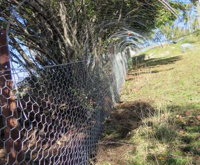 floppy-top wire mesh fence Possum proof fence, Pest proof garden, Pinterest, Fences Floppy-Top Wire Mesh Fence Top Possum Proof Fence, Pest Proof Garden, Pinterest, Fences Ideas