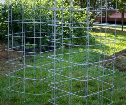 floppy-top wire mesh fence The Most Reliable Tomato Cages + Trellises /the-most-reliable-tomato-cages-trellises/slide/6 Floppy-Top Wire Mesh Fence Perfect The Most Reliable Tomato Cages + Trellises /The-Most-Reliable-Tomato-Cages-Trellises/Slide/6 Solutions