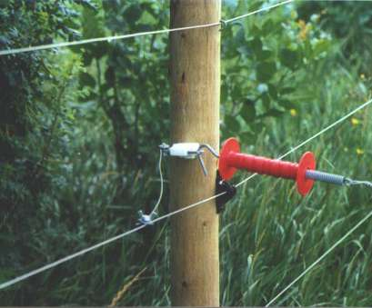 gallagher electric fence wire Everything, Need to Know About Electric Fencing, Fence Gallagher Electric Fence Wire Professional Everything, Need To Know About Electric Fencing, Fence Collections