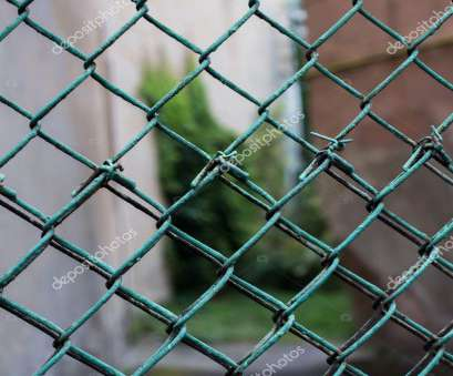 green wire mesh fence Green wire mesh with greens in background, blurred, close, Old painted mesh in form of fence or hedge., Photo by Gladkov Green Wire Mesh Fence Simple Green Wire Mesh With Greens In Background, Blurred, Close, Old Painted Mesh In Form Of Fence Or Hedge., Photo By Gladkov Solutions