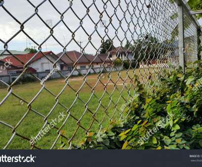 green wire mesh fence Wire Mesh Fence Green Climbing Plant Stock Photo (Edit Now Green Wire Mesh Fence Creative Wire Mesh Fence Green Climbing Plant Stock Photo (Edit Now Images