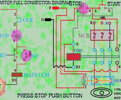 Havells, Starter Wiring Diagram Cleaver Dol Starter Control, Wiring Diagram Full Animation Pictures