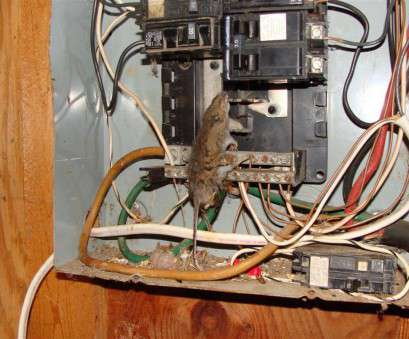 home electrical wiring training Electrical Panel Inspection Training Video