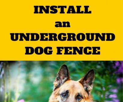how to twist electric dog fence wire Electric, Fence Best Of 11 Best Invisible Fence Images On Pinterest Of Electric, Fence How To Twist Electric, Fence Wire Professional Electric, Fence Best Of 11 Best Invisible Fence Images On Pinterest Of Electric, Fence Photos