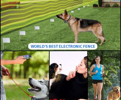 how to twist electric dog fence wire Electric, Fence Unique Bluetooth Electronic Fence Remote Trainer & Bark Control Collar Of Electric Dog How To Twist Electric, Fence Wire Cleaver Electric, Fence Unique Bluetooth Electronic Fence Remote Trainer & Bark Control Collar Of Electric Dog Solutions