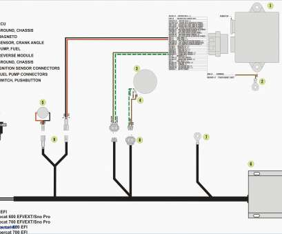 how to wire a fan light combo Bathroom Exhaust, With Light Wiring Diagram Inspirationa Nutone Wiring Up A Light Switch, Light Combo Wiring Diagram How To Wire A, Light Combo Best Bathroom Exhaust, With Light Wiring Diagram Inspirationa Nutone Wiring Up A Light Switch, Light Combo Wiring Diagram Solutions