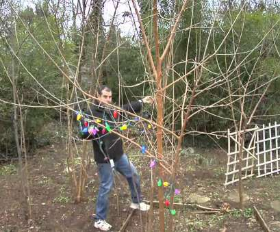 how to wire christmas lights outside How to Install Christmas Lights on Outside Trees How To Wire Christmas Lights Outside Best How To Install Christmas Lights On Outside Trees Solutions