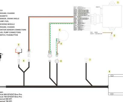 how to wire up a 240 volt light switch Wiring Diagram, 240 Volt Light Switch, Wiring Diagram with Contactor, Light Switch Wiring Mon How To Wire Up A, Volt Light Switch Brilliant Wiring Diagram, 240 Volt Light Switch, Wiring Diagram With Contactor, Light Switch Wiring Mon Galleries
