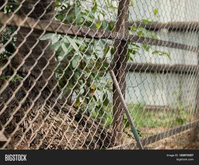 hurricane wire mesh fence COLOR PHOTO OF CHAIN-LINK FENCE (ALSO REFERRED TO AS WIRE NETTING, WIRE Hurricane Wire Mesh Fence Practical COLOR PHOTO OF CHAIN-LINK FENCE (ALSO REFERRED TO AS WIRE NETTING, WIRE Collections