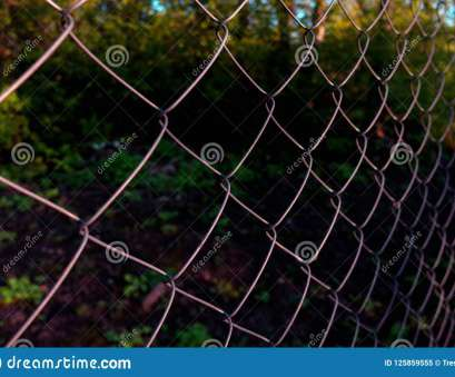 hurricane wire mesh fence Download Chain-link Fencing Or Cyclone Fence, Hurricane Fence, Diamond Mesh Patterning Hurricane Wire Mesh Fence Perfect Download Chain-Link Fencing Or Cyclone Fence, Hurricane Fence, Diamond Mesh Patterning Ideas