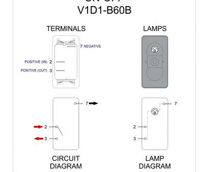 Marine Lighted Toggle Switch Wiring Diagram - Wiring Diagrams on