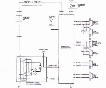 20 Professional Integra Starter Wiring Diagram Solutions