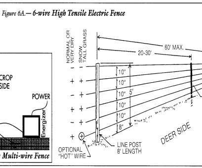 invisible dog fence wiring diagram ... oustanding Wiring Diagram Electric Fence, Electric Fence Wiring Diagram image is part of Home Depot Invisible, Fence Wiring Diagram New ... Oustanding Wiring Diagram Electric Fence, Electric Fence Wiring Diagram Image Is Part Of Home Depot Solutions