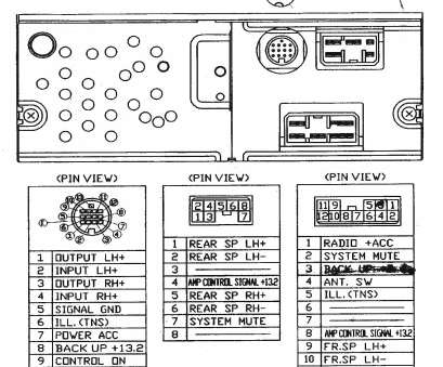 11 Most    Johnson    Controls Thermostat    Wiring       Diagram    Images