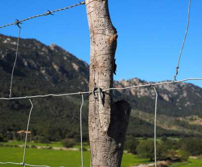 knotted wire mesh fence Barbed wire fence,wire,fenced,metal,fence, free photo from Knotted Wire Mesh Fence Best Barbed Wire Fence,Wire,Fenced,Metal,Fence, Free Photo From Solutions