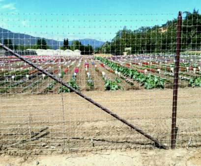knotted wire mesh fence Fixed Knot Ft X Mesh Solid Lock Deer Fence Woven Wire, Yard Knotted Wire Mesh Fence Perfect Fixed Knot Ft X Mesh Solid Lock Deer Fence Woven Wire, Yard Photos