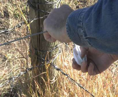 live wire electric fence How to install electric fence wire between corner post insulators Live Wire Electric Fence Brilliant How To Install Electric Fence Wire Between Corner Post Insulators Ideas