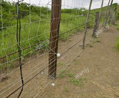 live wire electric fences western cape Electric fence of Siyakwemukela Hluhluwe Umfolozi Game Reserve South Africa, Stock Image Live Wire Electric Fences Western Cape Simple Electric Fence Of Siyakwemukela Hluhluwe Umfolozi Game Reserve South Africa, Stock Image Photos