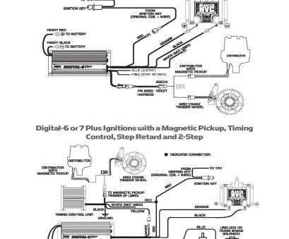 18 Professional Msd Digital 6 Wiring Diagram Collections