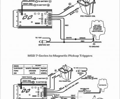 12 Professional Msd, Wiring Diagram Vw Ideas