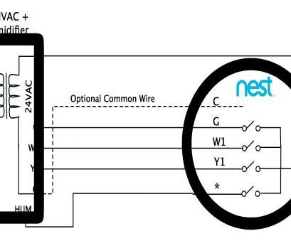 nest smart thermostat wiring diagram Wiring Diagram Pictures Detail: Name: nest thermostat humidifier wiring diagram, Nest Learning Nest Smart Thermostat Wiring Diagram New Wiring Diagram Pictures Detail: Name: Nest Thermostat Humidifier Wiring Diagram, Nest Learning Solutions