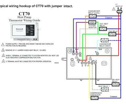 16 Fantastic Nest Thermostat Wiring Diagram 8 Wire Photos