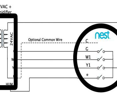 nest wiring diagram humidifier Built In, 1 Wire Random 2 Humidifier Wiring Diagram, Humidifier Wiring Diagram Nest Wiring Diagram Humidifier Fantastic Built In, 1 Wire Random 2 Humidifier Wiring Diagram, Humidifier Wiring Diagram Solutions