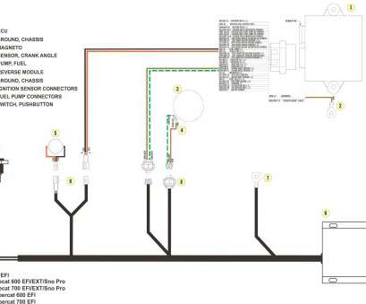 nz light switch wiring diagram Double Light Switch Wiring Diagram Nz Inspirational Wiring Diagram, Double Light Switch Free Download Wiring Diagram Nz Light Switch Wiring Diagram Simple Double Light Switch Wiring Diagram Nz Inspirational Wiring Diagram, Double Light Switch Free Download Wiring Diagram Photos