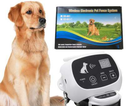 petsafe stubborn dog electric fence without wire Top 10 Best Electric, Fences in 2018, TopReviewProducts Petsafe Stubborn, Electric Fence Without Wire Fantastic Top 10 Best Electric, Fences In 2018, TopReviewProducts Photos