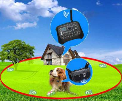 petsafe stubborn dog electric fence without wire Top 5 Best Wireless, Fence, Detailed Reviews! Petsafe Stubborn, Electric Fence Without Wire Practical Top 5 Best Wireless, Fence, Detailed Reviews! Images